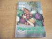 Vegetariánská kuchařka pro dospělé