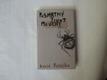 Růžička David - Posmrtný život mouchy