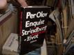 Strindberg - život (Předloha k životopisnému...