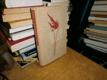 Život s pochodní v ruce - Čtení o K. Havlíčkovi