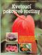 Kvetoucí pokojové rostliny (veľký formát)
