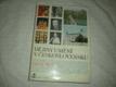 Dějiny umění v Československu