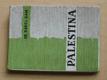 Palestina (1948) Židovské osady