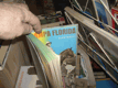 Pampa Florida