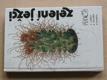 Zelení ježci (1989) Kaktusy