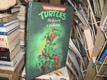 Hrdinové z podzemí - Turtles