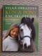 Velká obrazová encyklopedie - Kůň a pony