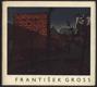 František Gross