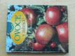 Ovoce v zahradě (1999)