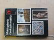 Malá galerie českých malířů (1980)