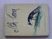 Na lovu (1960) Příběhy s norníky