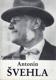Antonín Švehla, Profil československého státníka