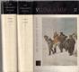 Tolstoj - Vojna a mír (2 díly - Komplet)