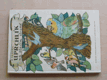 Uprchlík na ptačím stromě (1967)