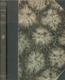 1916 Sborník: Čeští spisovatelé vdováma sirotkům našich vojínů
