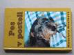 Pes v posteli (2002) Jezevčík