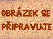 F. V. HEK PÍŠE SYNOVI