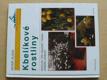 Kbelíkové rostliny (1999)