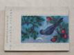 Vo modrým ptáčku (1960) sešit