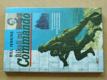 Říkali mi Commando - Vzpomínky na operace na jaderském pobřeží 2-sv-v-