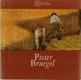 Pieter Bruegel Jaromír Neumann