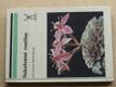 Sukulentní rostliny (1987)