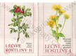 Léčivé rostliny I. a II.
