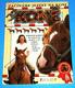Koně - Začínam jezdit na koni