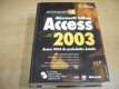 Mistrovství v Access 2003 + CD