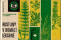 Rostliny v domácí lékárně