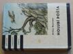 Holubí pošta (1964) il. Lhoták