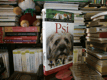 Psi - Velký ilustrovaný průvodce