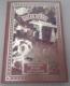 Jules Verne: Dobrodružství tří Rusů a tří Angličanů