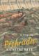 Přehrada na Velké řece : Technický román pro mládež