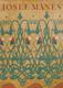 Josef Mánes malíř vzorků a ornamentu (veľký formát)