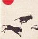 Ráj divokých zvířat