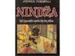 Nindža : kult japonského tajného boje bez příkras