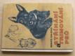 Stříhání a trimování psů (1995)