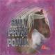 Můj první poník - Sandy Ransford