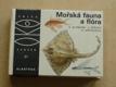 Altmann - Mořská fauna a flóra (1984)