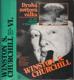 Druhá světová válka VI. - Triumf a tragédie
