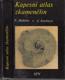 Habětín, Knobloch - Kapesní atlas zkamenělin