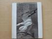 Příběhy o soudci Ookovi - Japonské pohádky (1984) il. Bednářová