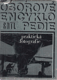 Praktická fotografie  (z edice Oborové encyklopedie)