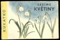 Kukátko - Sázíme květiny