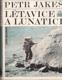 Létavice a Lunatici (malý formát)