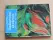 Sladkovodní akvárium (1999) Zařízení - Péče - Ryby - Rostliny