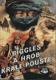 Biggles a hrob krále pouště