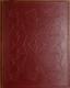 Všemu navzdory (1916)