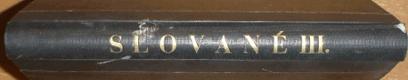 Slované III. - Zeměpisný obraz, statistika, ústavní zřízení a filosofie slovanstva